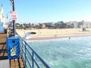 Santa Monica_02